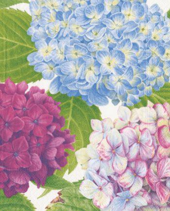 Caspari Servetter Hydrangea Garden Blue