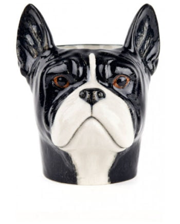 Quail fransk bulldog